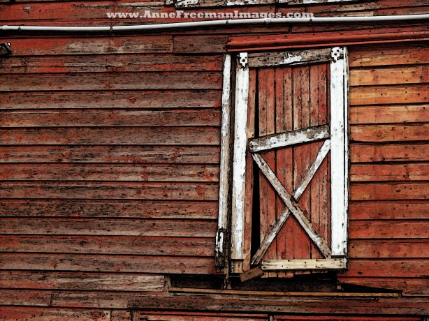 Barn Door with White Pipe - Copyright Anne M. Freeman