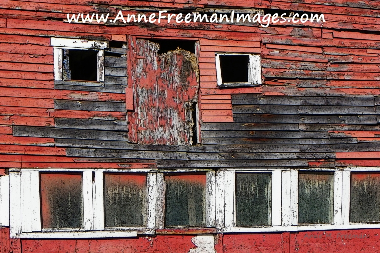 EightWindows-AnneFreemanImages4x6Web